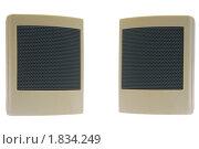 Купить «Маленькая компьютерная акустическая система, два элемента», фото № 1834249, снято 8 июля 2010 г. (c) Александр Лукьянов / Фотобанк Лори