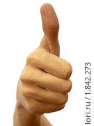 Купить «Большой палец вверх», фото № 1842273, снято 22 октября 2009 г. (c) Антон Балаж / Фотобанк Лори
