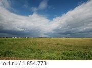 Облака над полем. Стоковое фото, фотограф Наталья Гребенюк / Фотобанк Лори