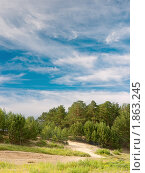 Купить «Летний пейзаж», фото № 1863245, снято 17 июля 2010 г. (c) Сергей Белов / Фотобанк Лори