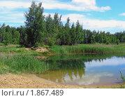 Купить «Летний пейзаж», эксклюзивное фото № 1867489, снято 10 июня 2010 г. (c) lana1501 / Фотобанк Лори