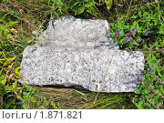Купить «Немецкие захоронения в Крыму», фото № 1871821, снято 22 июля 2010 г. (c) Елизавета Светилова / Фотобанк Лори