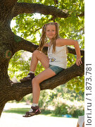 Девочка на дереве. Стоковое фото, фотограф Калинина Алиса / Фотобанк Лори