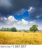 Купить «Летний пейзаж», фото № 1887857, снято 27 июля 2010 г. (c) Яков Филимонов / Фотобанк Лори