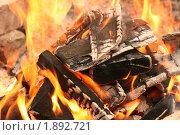 Купить «Костер», фото № 1892721, снято 1 мая 2010 г. (c) Щеголева Ольга / Фотобанк Лори