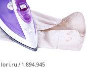 Купить «Утюг на бежевой рубашке», фото № 1894945, снято 4 августа 2009 г. (c) Петр Малышев / Фотобанк Лори