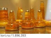 Купить «Шахматные фигуры», фото № 1896393, снято 14 января 2010 г. (c) Георгий Солодко / Фотобанк Лори