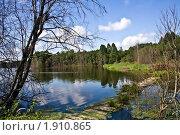 Рибшевское озеро (Смоленское Поозерье) (2010 год). Редакционное фото, фотограф Попонина Ольга / Фотобанк Лори