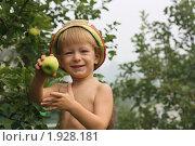 Купить «Малыш показывает сорванное с дерева яблоко», фото № 1928181, снято 6 августа 2010 г. (c) Оксана Лычева / Фотобанк Лори