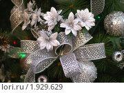 Купить «Серебряные украшения», фото № 1929629, снято 16 декабря 2007 г. (c) Ольга Липунова / Фотобанк Лори