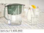 Купить «Фильтр для воды на кухне», фото № 1935993, снято 25 апреля 2009 г. (c) Никита Буйда / Фотобанк Лори