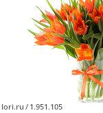 Купить «Букет тюльпанов в вазе», фото № 1951105, снято 30 апреля 2010 г. (c) Наталия Кленова / Фотобанк Лори