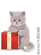 Купить «Кот с красной подарочной коробкой», иллюстрация № 1953565 (c) Дорощенко Элла / Фотобанк Лори