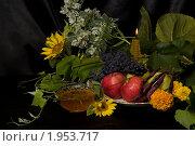 Купить «Фрукты и мед на темном фоне», фото № 1953717, снято 20 августа 2010 г. (c) Владимир Фаевцов / Фотобанк Лори