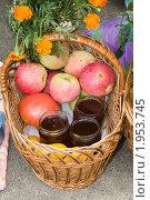 Купить «Фрукты и мед в корзине», фото № 1953745, снято 18 августа 2010 г. (c) Владимир Фаевцов / Фотобанк Лори