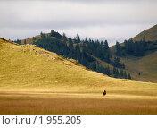 Купить «Хмурое утро в горах», фото № 1955205, снято 17 августа 2010 г. (c) Andrey M / Фотобанк Лори