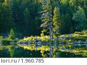 Купить «Алтай. Озеро у подножия горы Красная», фото № 1960785, снято 18 августа 2010 г. (c) Andrey M / Фотобанк Лори