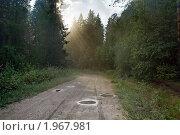 Купить «После дождя, грунтовка», фото № 1967981, снято 22 июля 2010 г. (c) Кондорский Дмитрий / Фотобанк Лори