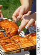 Купить «Рыба, приготовленная на костре», фото № 1974197, снято 12 июня 2009 г. (c) DENIS KARPOV / Фотобанк Лори