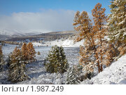 Купить «Алтайский зимний пейзаж», фото № 1987249, снято 18 сентября 2009 г. (c) Serg Zastavkin / Фотобанк Лори