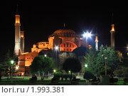 Купить «Айя-София. Стамбул, Турция», фото № 1993381, снято 25 мая 2018 г. (c) Светлана Привезенцева / Фотобанк Лори