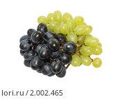 Купить «Гроздья черного и зеленого винограда на белом фоне», фото № 2002465, снято 23 сентября 2010 г. (c) Игнатьева Алевтина / Фотобанк Лори