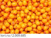 Фон из ягод облепихи. Стоковое фото, фотограф Игнатьева Алевтина / Фотобанк Лори