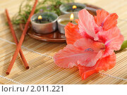 Купить «Ароматерапия», фото № 2011221, снято 25 августа 2010 г. (c) Литова Наталья / Фотобанк Лори