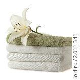 Купить «Лилия с полотенцами», фото № 2011341, снято 5 июля 2010 г. (c) Литова Наталья / Фотобанк Лори