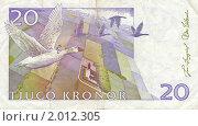 Шведские 20 крон. Стоковое фото, фотограф Илья Забежинский / Фотобанк Лори
