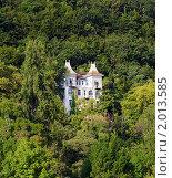 Купить «Старинный замок в густом лесу», фото № 2013585, снято 13 сентября 2005 г. (c) Евгений Ткачёв / Фотобанк Лори