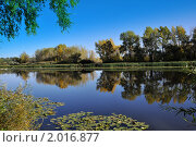 Пруд. Стоковое фото, фотограф Евгений Безгодов / Фотобанк Лори