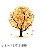 Клен осенью. Стоковая иллюстрация, иллюстратор Владимир / Фотобанк Лори