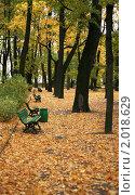 Осень в Летнем саду (2008 год). Редакционное фото, фотограф Мария Васильева / Фотобанк Лори