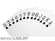 Купить «Игральные карты. Пики», фото № 2028297, снято 11 декабря 2009 г. (c) Losevsky Pavel / Фотобанк Лори