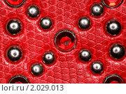 Купить «Кожа с металлическими заклепками и драгоценными камнями», фото № 2029013, снято 9 декабря 2009 г. (c) Losevsky Pavel / Фотобанк Лори