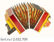 Купить «Саратовская гармонь», фото № 2032709, снято 6 октября 2010 г. (c) Антон Стариков / Фотобанк Лори