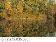 Купить «Золотая осень», эксклюзивное фото № 2035385, снято 9 октября 2010 г. (c) Валерия Попова / Фотобанк Лори
