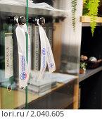 Купить «Всероссийская перепись населения - 2010», фото № 2040605, снято 11 октября 2010 г. (c) Анна Мартынова / Фотобанк Лори