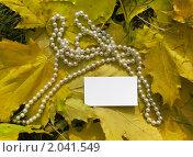 Белая карточка на желтый листьях. Стоковое фото, фотограф Алёна Самойликова / Фотобанк Лори