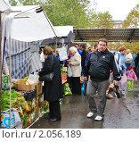 Купить «Покупатели на ярмарке выходного дня», эксклюзивное фото № 2056189, снято 18 августа 2019 г. (c) Анна Мартынова / Фотобанк Лори