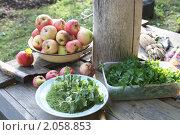 Купить «Дары сада», фото № 2058853, снято 26 сентября 2010 г. (c) Наталья Блинова / Фотобанк Лори