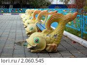 Рыбки (2010 год). Стоковое фото, фотограф Винокуров Евгений / Фотобанк Лори