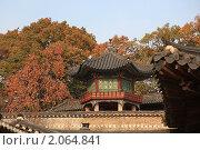 Купить «Беседка в восточном стиле и дерево хурмы», фото № 2064841, снято 5 ноября 2009 г. (c) Ольга Липунова / Фотобанк Лори
