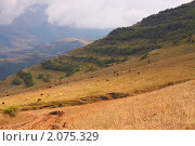 Сюник, Армения. Стоковое фото, фотограф Василий Геворкян / Фотобанк Лори