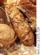 Купить «Хлеба с семенами и злаками различной формы», фото № 2075729, снято 7 октября 2010 г. (c) Татьяна Белова / Фотобанк Лори