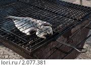 Рыба на гриле. Стоковое фото, фотограф Ярослава Синицына / Фотобанк Лори