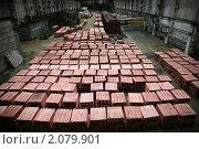 Купить «Медь», фото № 2079901, снято 28 ноября 2009 г. (c) Дмитрий Кузмичев / Фотобанк Лори