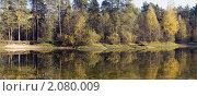 Купить «Лесное озеро», фото № 2080009, снято 10 октября 2010 г. (c) Сергей Перевозчиков / Фотобанк Лори