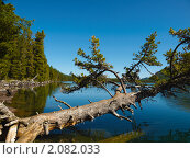 Купить «Алтай. Озеро Нижнее Мультинское», фото № 2082033, снято 21 августа 2010 г. (c) Andrey M / Фотобанк Лори